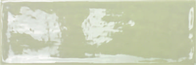 OLIVA BRILLO СП667