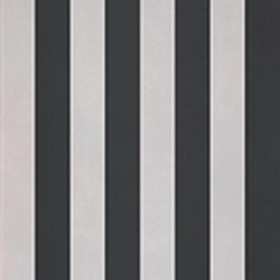 R-Evolution Stripes A